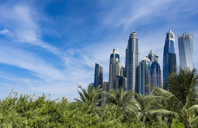 De wolkenkrabberhorizon van Doubai met palmen stock afbeeldingen