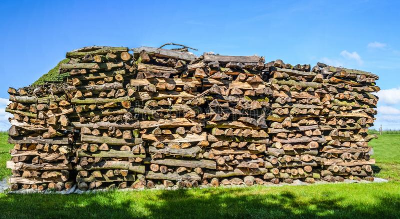 Pile of fire wood on green meadow stock image