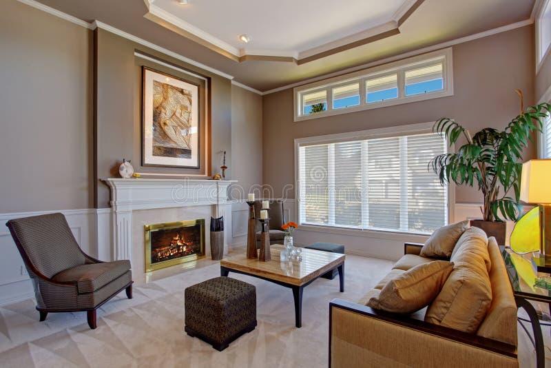 De woonkamer van de luxe met open haard royalty-vrije stock foto's