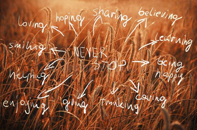 De woorden houden nooit idee met de hand geschreven op een gebied van tarwe klaar aan B tegen stock foto's