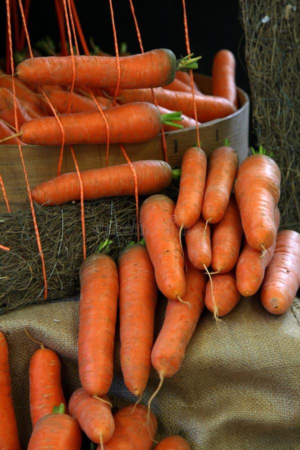 De wortelen van de landbouwer `s royalty-vrije stock foto