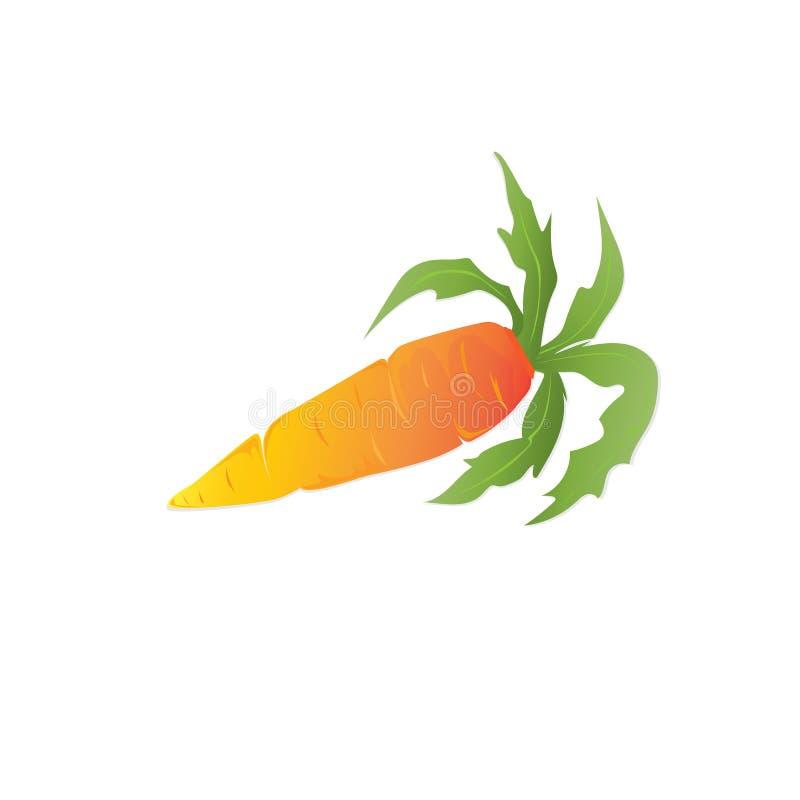 De wortelen zijn oranje met bladeren royalty-vrije illustratie