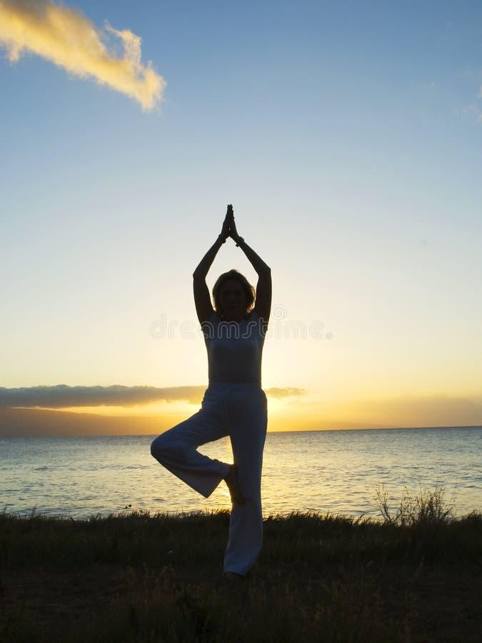 De yoga van de zonsondergang stock afbeeldingen