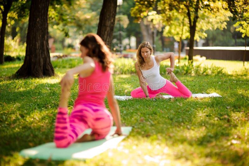 De yoga van de twee meisjespraktijk in het park bij de Bochtige Aap stelt stock foto's