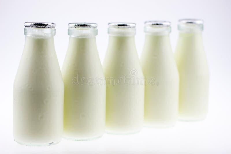 De yoghurt stock foto