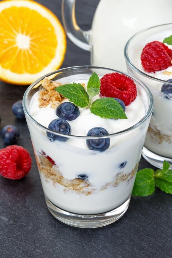De yoghurt van de bessenyoghurt met muesliportret van de bessenkop voor royalty-vrije stock foto