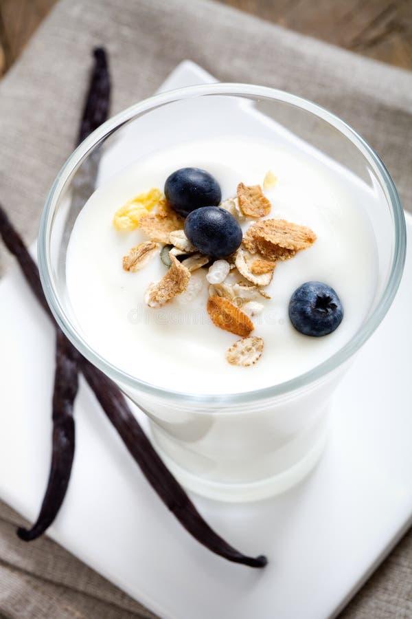De yoghurt van de vanille royalty-vrije stock afbeeldingen