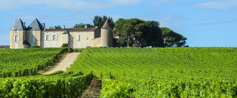 De Yquem de vignoble et de château, région de sauternes, l'Aquitaine, franc photos libres de droits