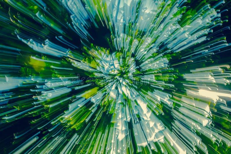 De zachte gekleurde samenvatting het licht glanst door de bomen royalty-vrije stock foto