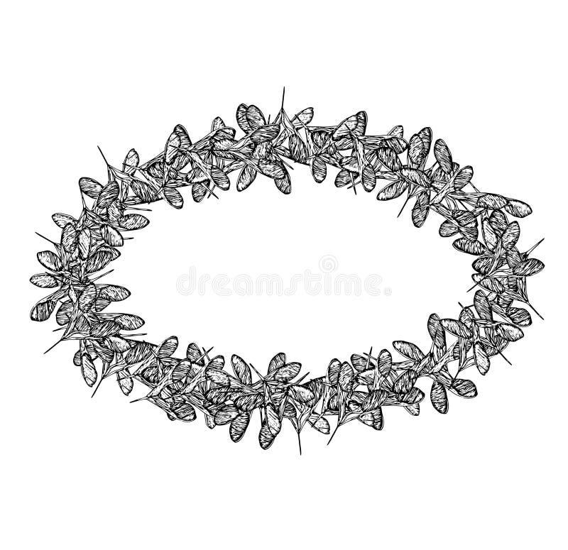 De zaden ovale zwarte van de kaderklaver royalty-vrije illustratie