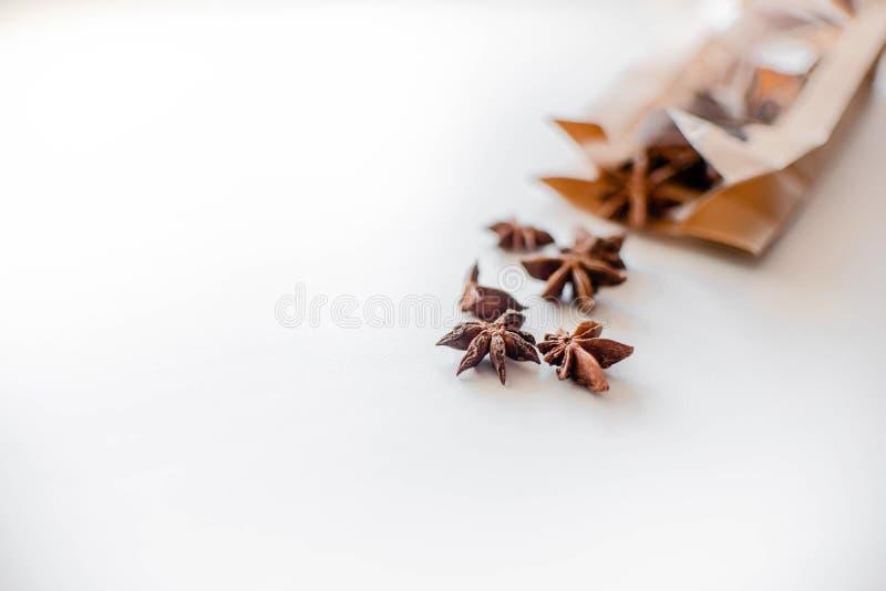 De zaden van de anijsplantboom op witte achtergrond stock foto's