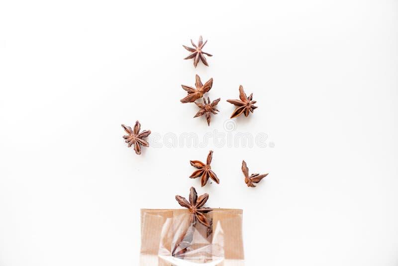 De zaden van de anijsplantboom op witte achtergrond vector illustratie