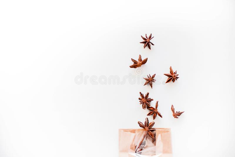 De zaden van de anijsplantboom op witte achtergrond stock foto