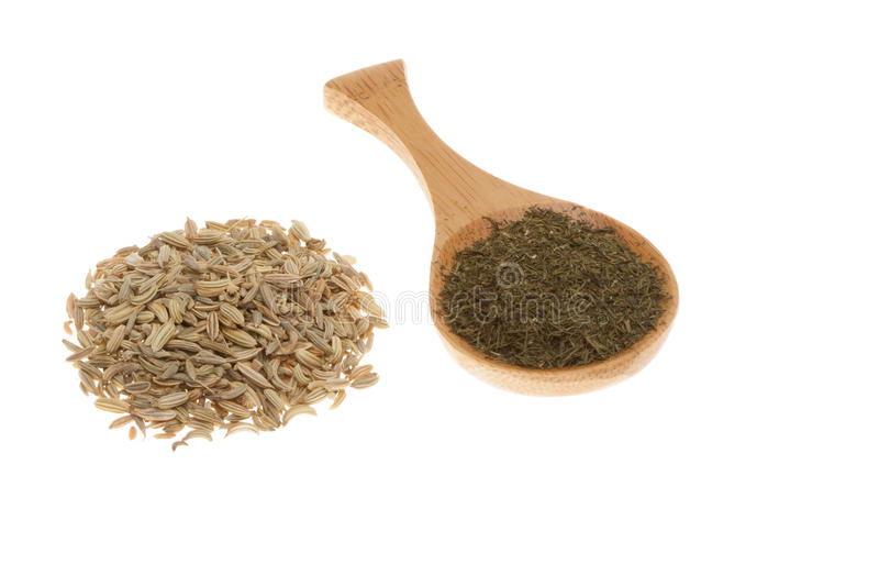 De zaden van de dille en droge dille op een houten lepel stock fotografie