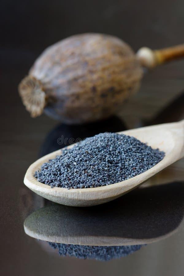De zaden van de papaver. royalty-vrije stock afbeeldingen