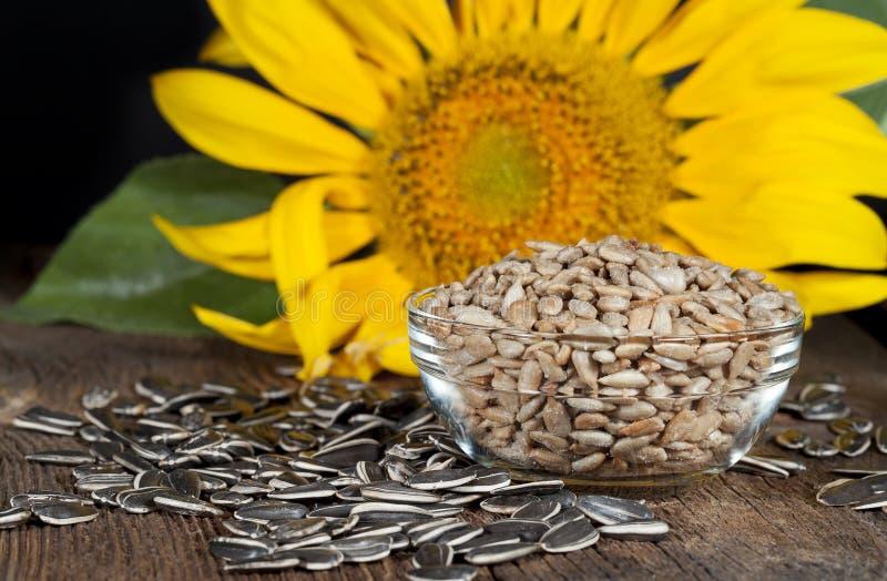 De zaden van de zonnebloem stock foto's