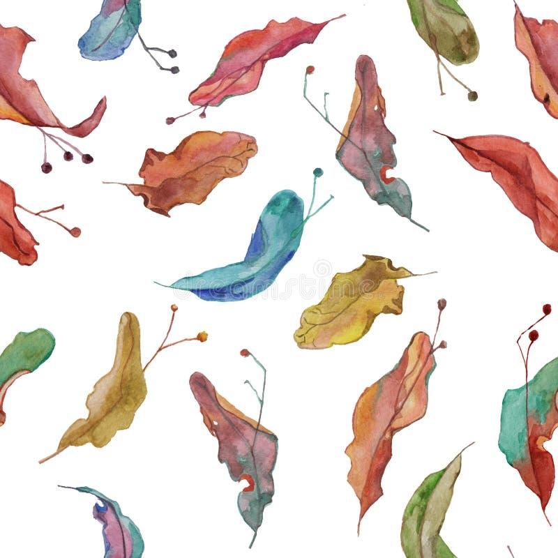 De zadenpatroon van de Watercolour kleurrijk linde vector illustratie