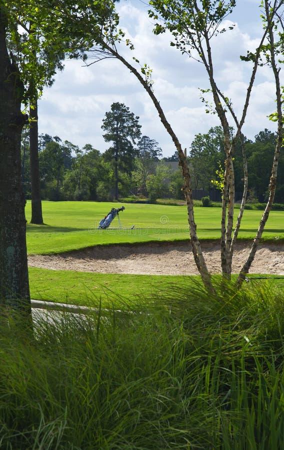 De zak van het golf op cursus stock fotografie
