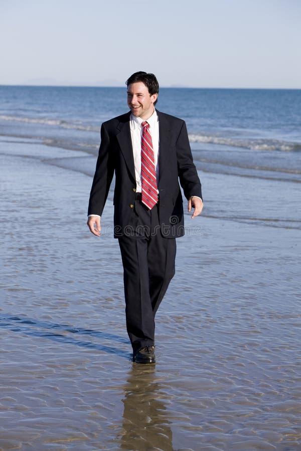 De Zakenman van Beachside stock fotografie