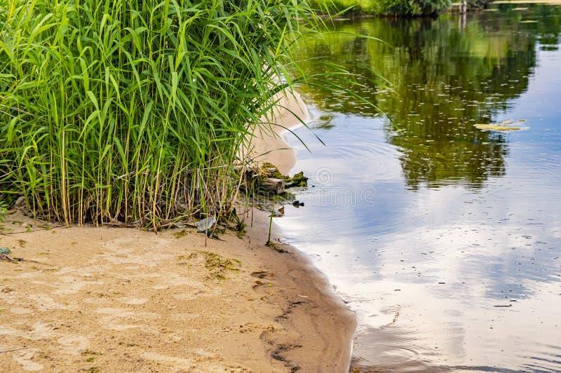 De zandige kust van de rivier met de bezinning van de hemel in het water stock foto's