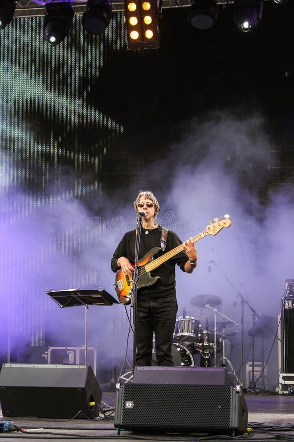 De zanger met een gitaar stock foto's