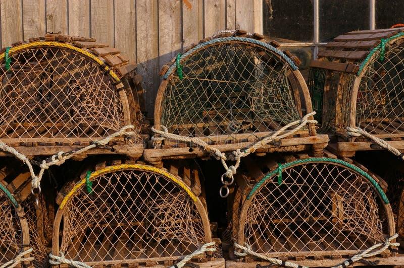 De zeekreeft sluit 2 op stock foto's