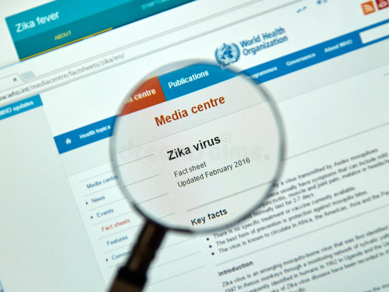 De zeer belangrijke feiten van het Zikavirus royalty-vrije stock fotografie