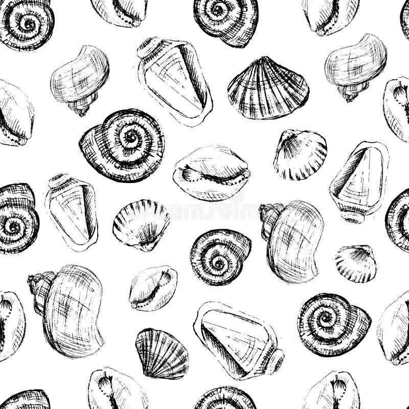 De zeeschelpen overhandigen de getrokken vector grafische die schets van de etsinkt op witte achtergrond, naadloos patroon wordt  vector illustratie