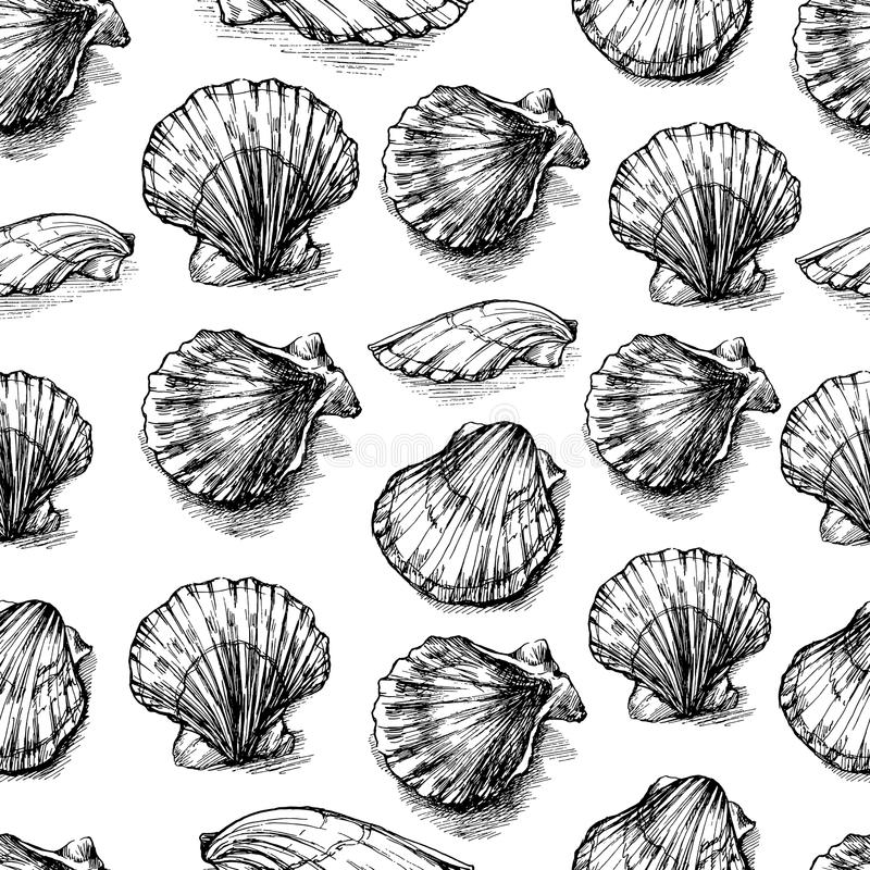 De zeeschelpen overhandigen getrokken vector grafische die etsschets op witte achtergrond, naadloos patroon, onderwater artistiek vector illustratie