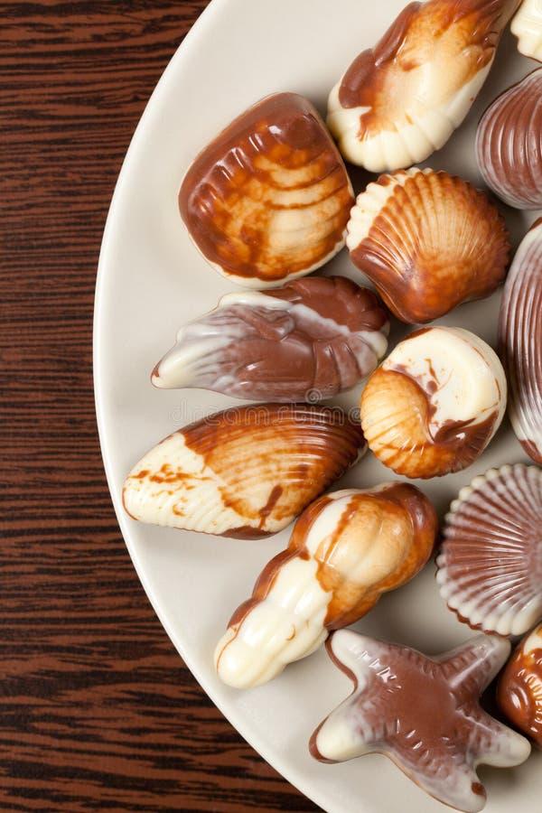 De zeeschelpen van de chocolade royalty-vrije stock afbeeldingen