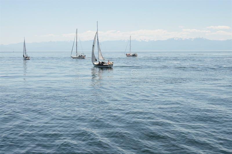 De zeilboten vaart weg aan de oceaan stock foto's