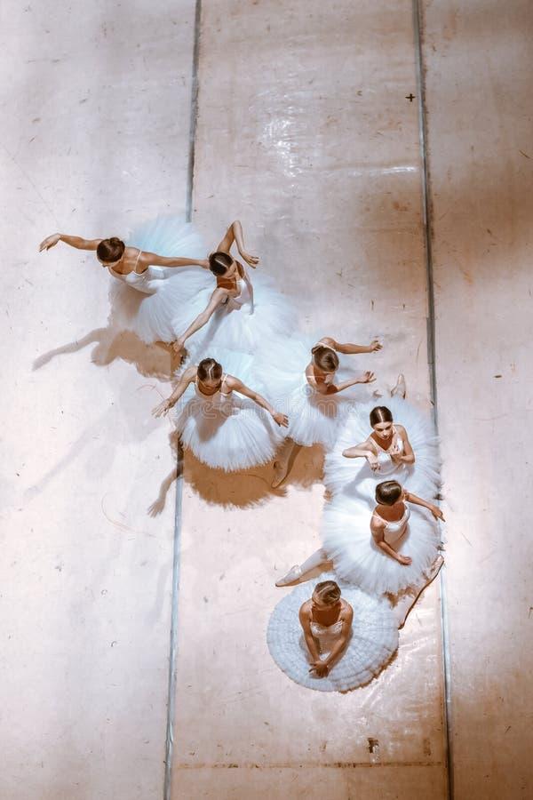 De zeven ballerina's op vloer stock afbeeldingen
