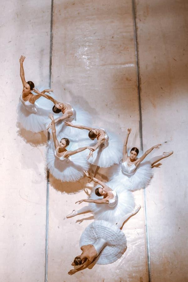 De zeven ballerina's op vloer stock afbeelding