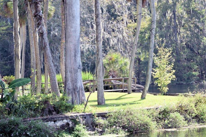 De zilveren tuinen van het Parkflorida van de de Lentesstaat stock foto's