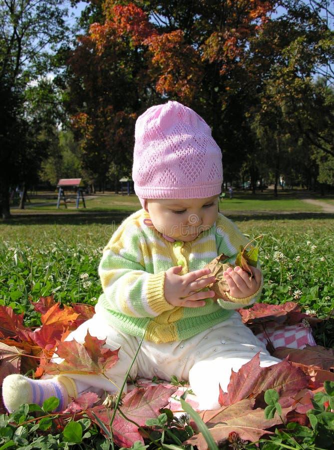 De zitting van de baby in bladeren stock fotografie