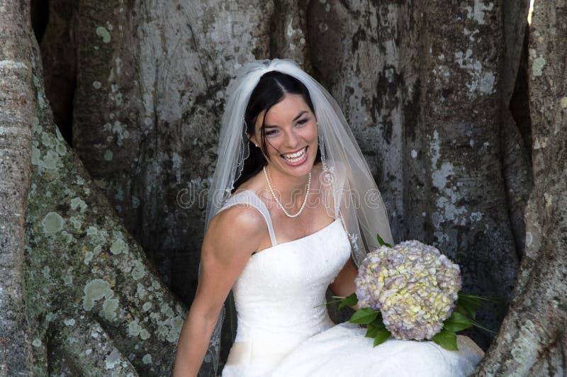 De zitting van de bruid onder boom royalty-vrije stock fotografie