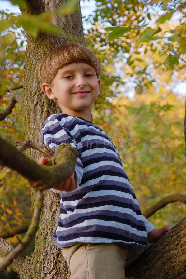 De zitting van de jongen op de boom stock fotografie