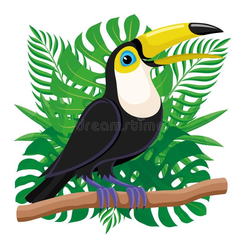 De zitting van de toekanvogel op een tak vector illustratie