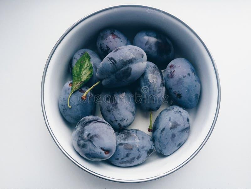 De zoete vruchten van de pruim blauwe zomer stock foto