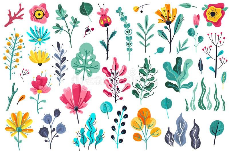 De zomer bloeit vlak Bloemen van de de installatieaard van de tuinbloem bloeiend van de de schoonheidslente bloemen botanisch de  vector illustratie
