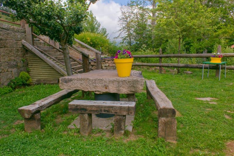De zomer of de lente mooie tuin met bloemen royalty-vrije stock foto's