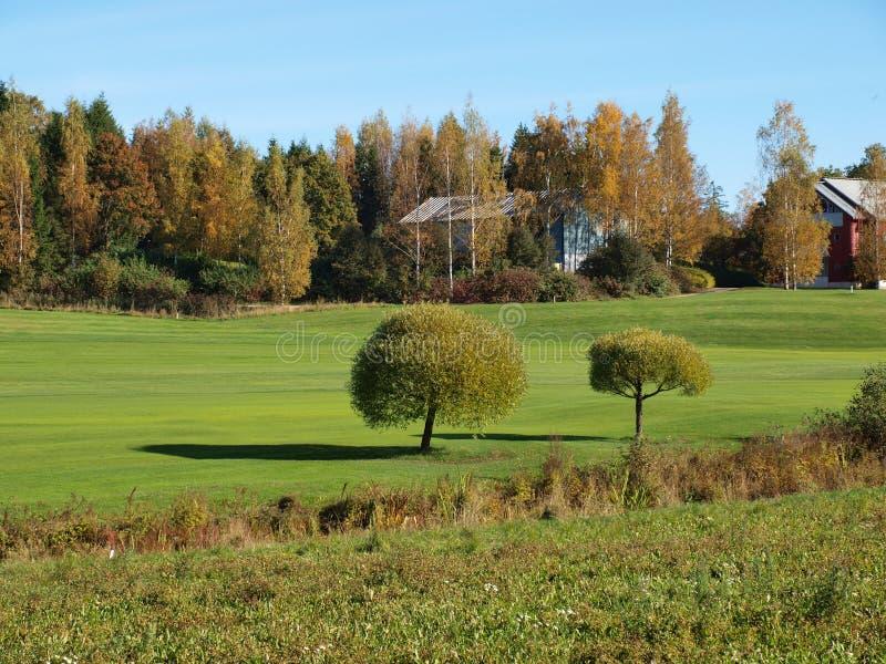 De zomer in Finland stock afbeelding