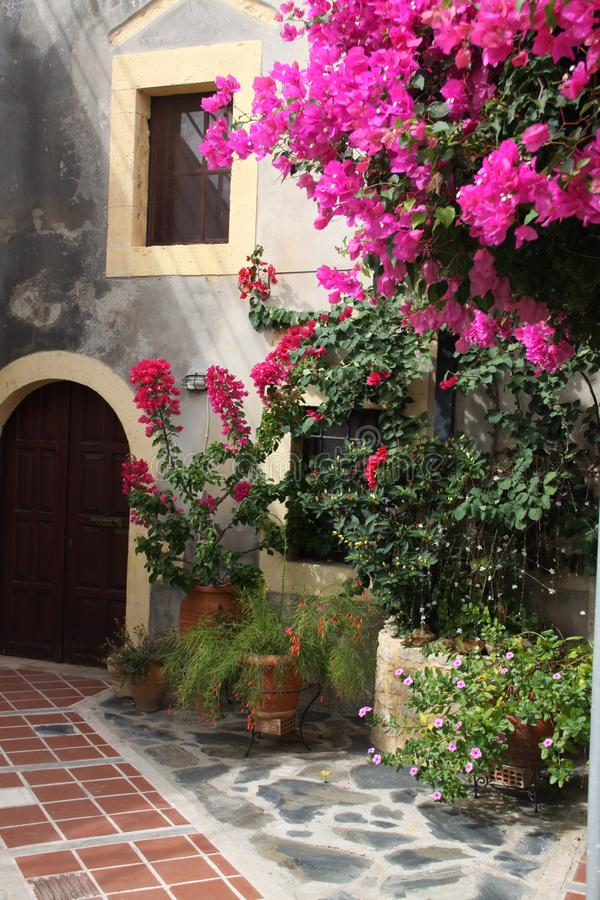 De zomer in Griekse tuin stock fotografie