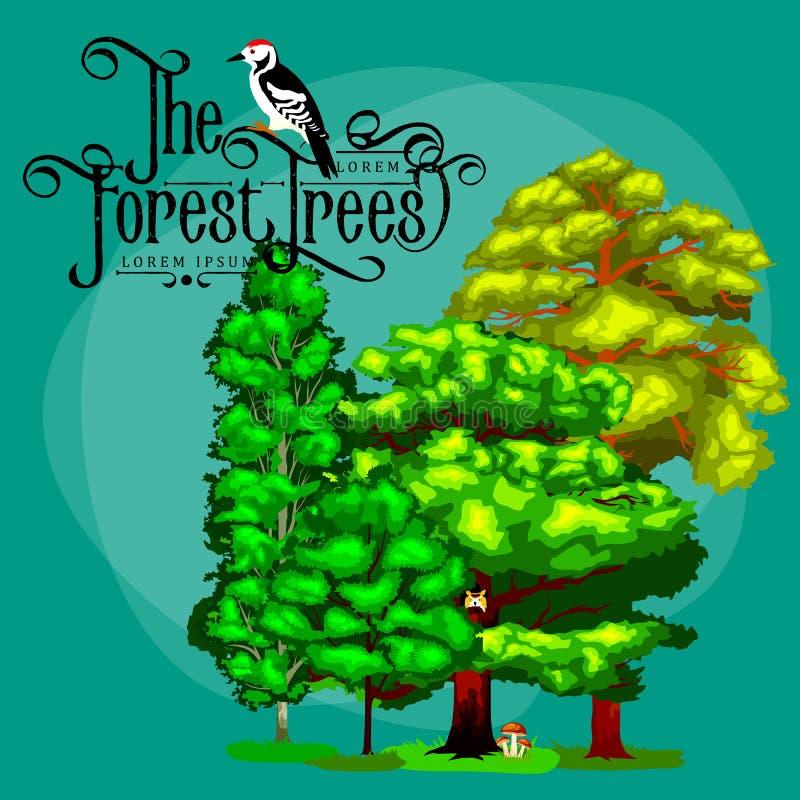 De zomer Groen Forest Tree en kleine dieren in wilde aard Beeldverhaal vector vastgestelde bomen in openluchtpark Openluchtbomen  royalty-vrije illustratie