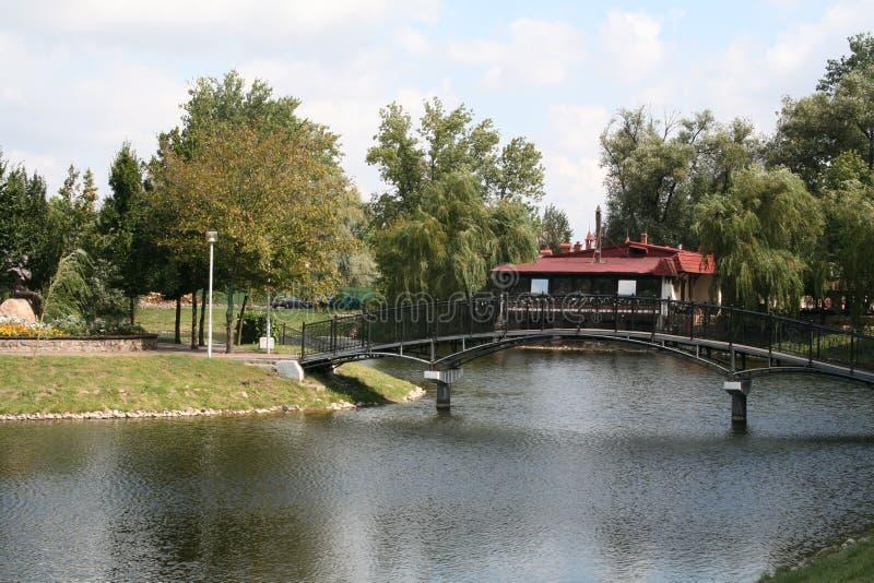 De zomer in het park royalty-vrije stock afbeelding