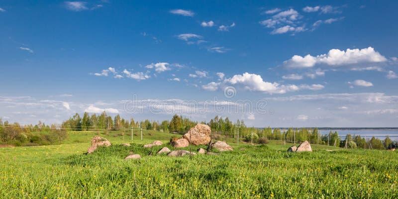 de zomer heuvelige die weide met dik gras met grote stenen onder de blauwe bewolkte hemel wordt overwoekerd royalty-vrije stock foto's