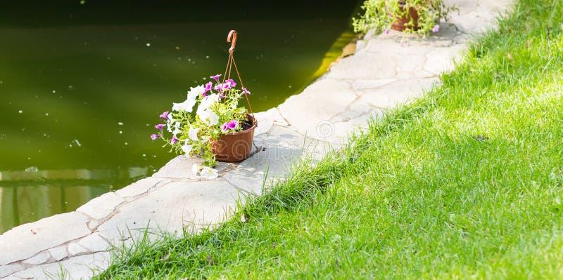 De zomer ingemaakte bloemen stock fotografie
