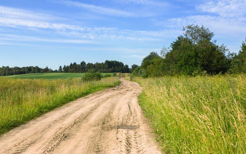 De zomer Landelijk Landschap met een Landweg op het Gebied royalty-vrije stock afbeelding
