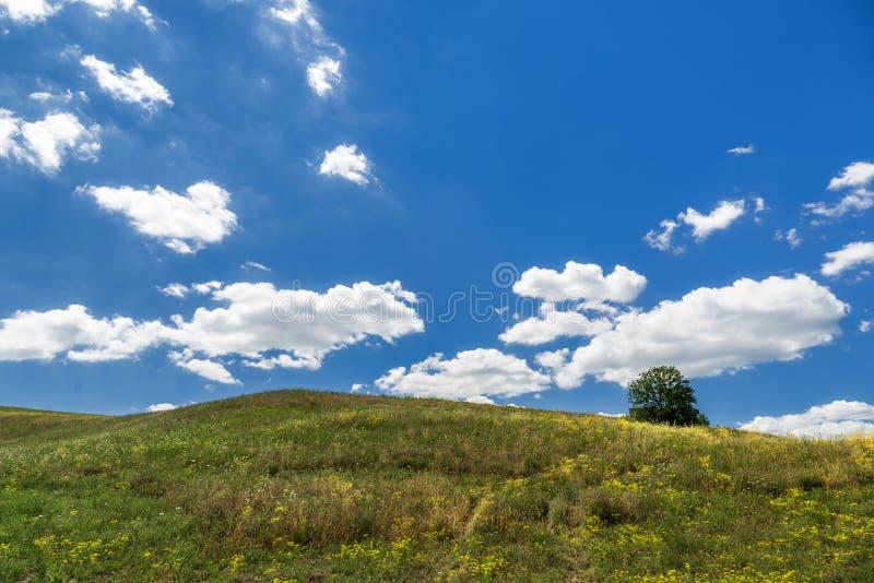 De zomer landelijk landschap over Val D ?Agri, Basilicata stock foto