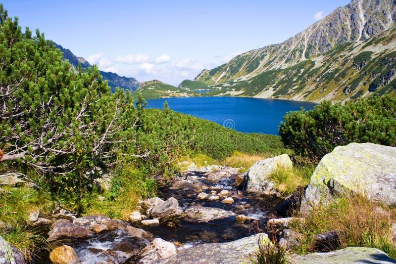 De zomer in 5 merenvallei in Hoge Tatra-Bergen stock afbeelding